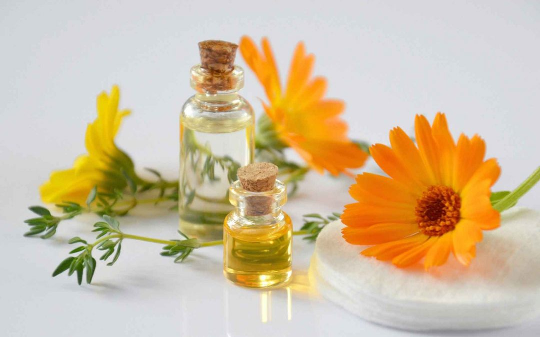 Cacay olej jako zázrak proti stárnutí?